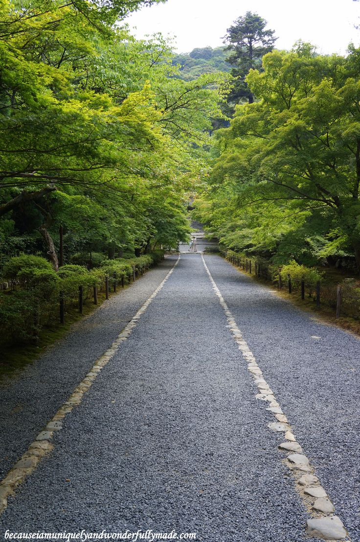 The path of meditation leading to the main temple of Nison-in Temple 二尊院 in Kyoto 京都市 , Japan 日本.