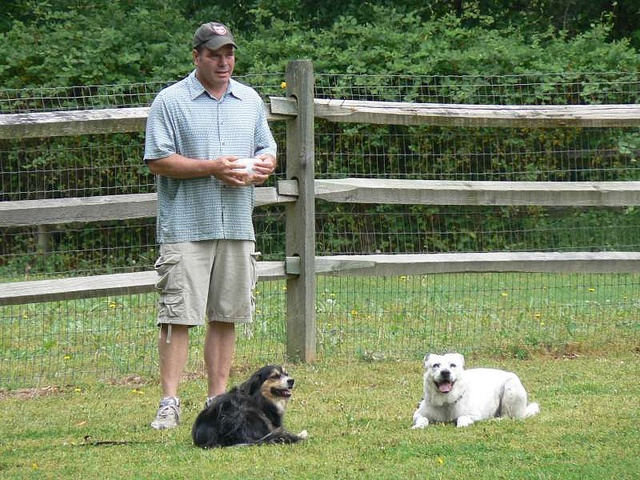 Dog Training In Charlotte has also been recognized on national TV Dog Training in Charlotte has regular appearances on local news networks.    Contact Us  Dog Training In Charlotte NC  Bruce Allen  Animal Behavior Specialist  1800 Camden Rd,  Suite 10756,  C get free dog training courses http://FreeDogTraining.bestonlineproducts.net/