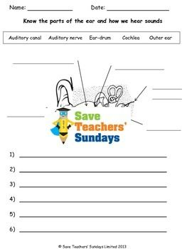 A zipped folder with an editable Word / PowerPoint / Excel version and a PDF version of each file:- a lesson plan on parts of the ear and how we hear- a worksheet on parts of the ear and how we hear (which can be seen in the preview)You can find more science lesson plans, worksheets and other teaching resources in our TpT store