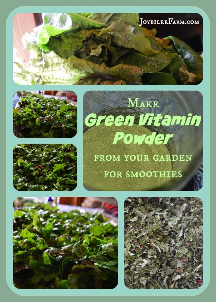 DIY Superfood Greens Supplement Powder using greens & weeds from garden