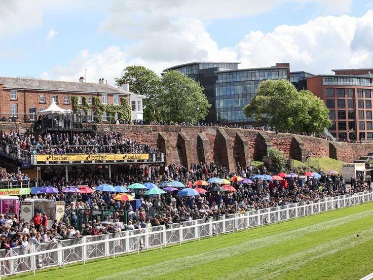 UK Racecourse Website Directory. Racecourse Social Media. Racecourse History. Comprehensive list of racecourses from across the world.