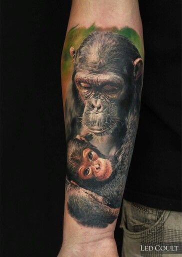 Realistic Gorilla Tattoo by Led Coult