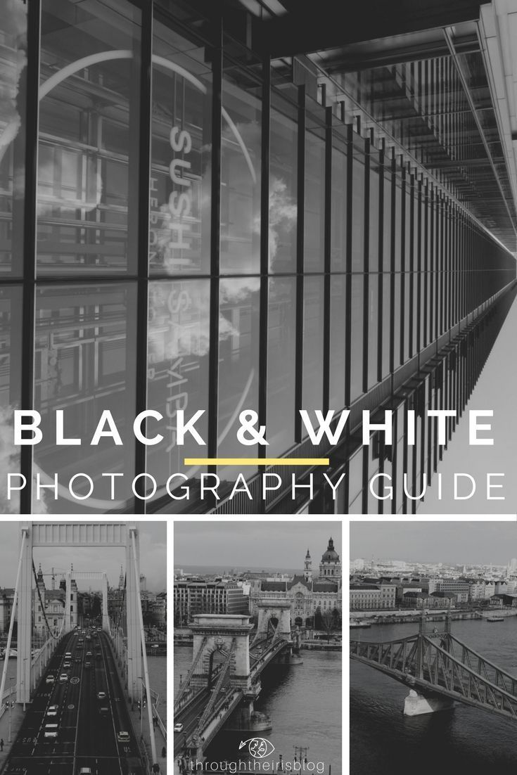 Digital like photography techniques just like the pros cameras pinterest beginner photography black white photography and street photography