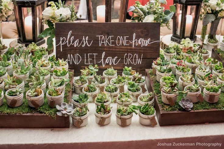 Such cute guest favors! Mallard Island Yacht Club, NJ Photo Credit Joshua Zuckerman Photography @mallardislandyachtclub @zuckphotography #weddingsofdistinction #weddingsofdistinctionnj #njwedding #luxurywedding #mallardislandyachtclub #yachtclubwedding #guestfavors #favors #succulents #succulentfavors #waterfrontweddings #coastalwedding