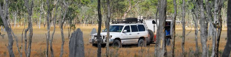 Melaluca Forest, Musgrave.  Off Road Adventure Safaris.  www.tourcapeyork.com.au
