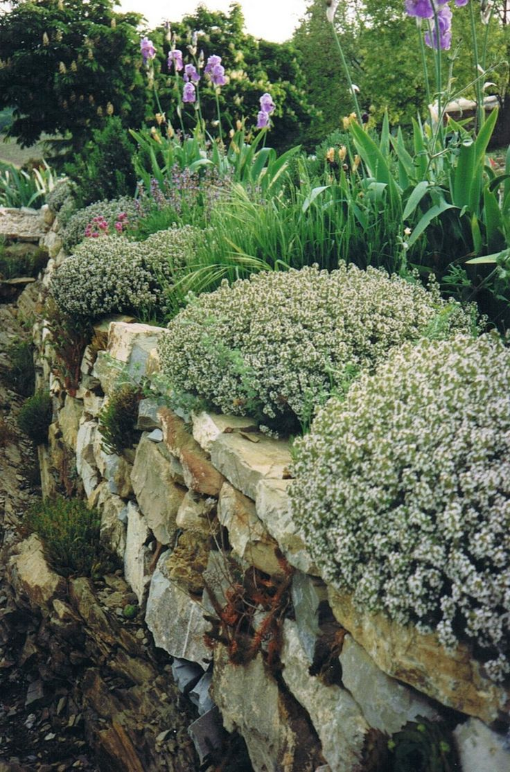 Don t forget that decorating the garden you must think about nature - This Informal Tuscan Garden Uses A Relaxed Planting Scheme Focusing On The Use Of Natural Stone