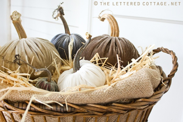 velvet pumpkins...too cute!: Fall Pumpkin, Decor Ideas, Fall Decor, Color, Falldecor, Fall Fun, Velvet Pumpkins, Letters Cottages, Sewing Inspiration