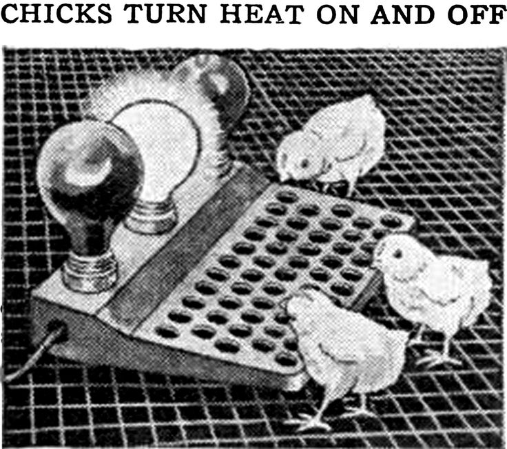 "danskjavlarna:  "" Weather changes explained – ""Chicks turn heat on and off."" From Popular Mechanics, 1934.  Please do join (if only as a spectator) my psychic battle against vintage Popular Mechanics magazine.  My Strange & Unusual Site 
