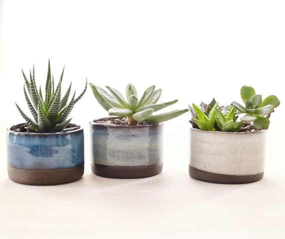 Hey, I found this really awesome Etsy listing at https://www.etsy.com/ru/listing/202487192/set-of-three-ceramic-planters-for