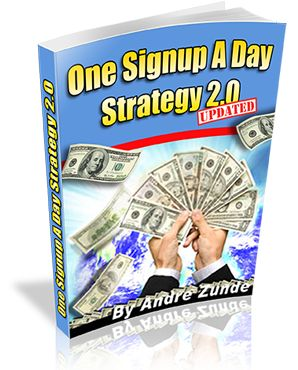 Get leads and signups to the businesses you promote.