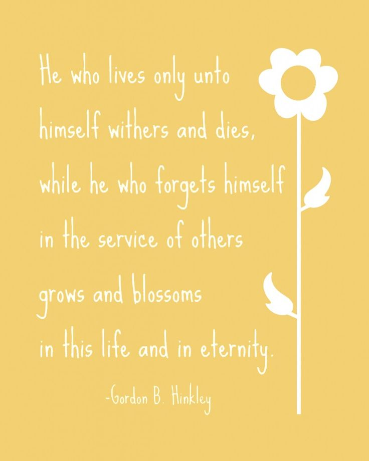 He who forgets himself...: Good Thoughts, Awesome Quotes, Favorite Thoughts, Yellow Quote, Dr. Who, Blossoms, Yellow Flower