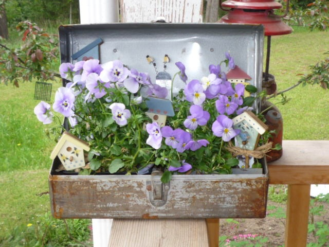My tool box planter i am sooo doing this my little for Garden getaway designs