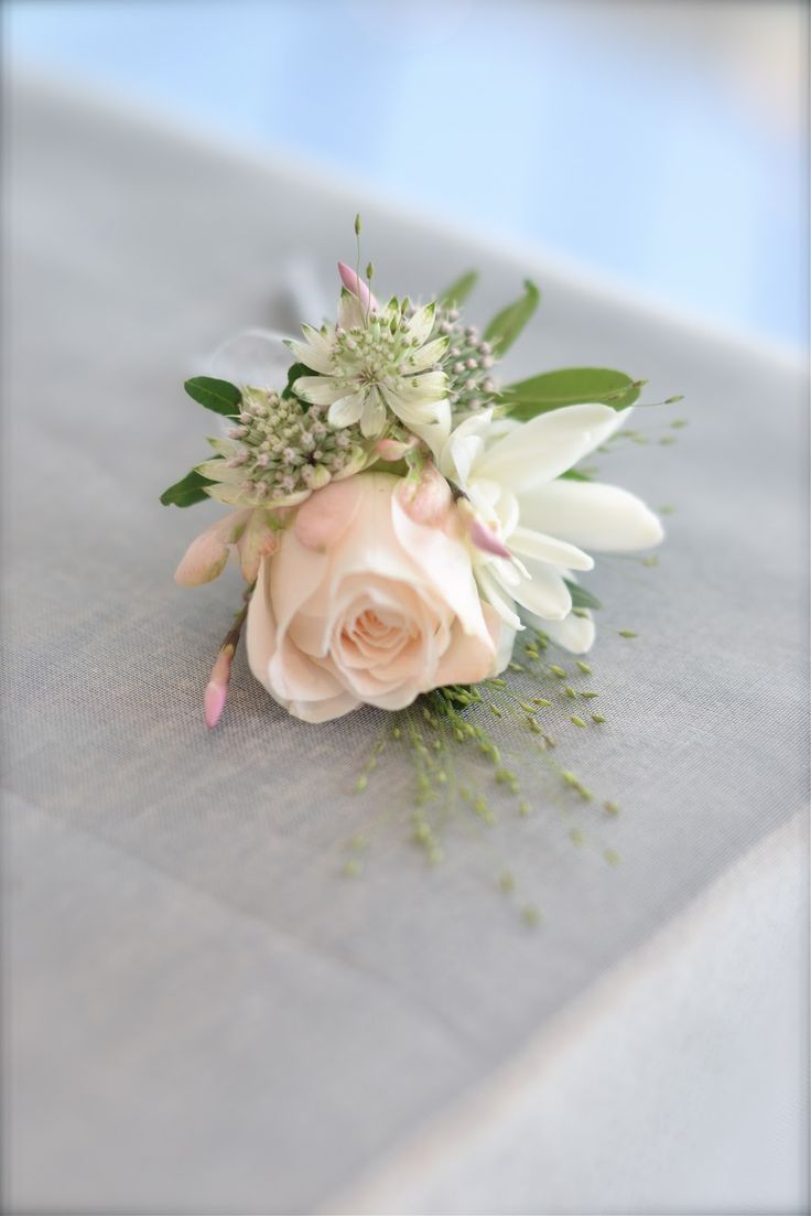 Pretty blush buttonhole. To show shape and style. Could be white with grey and small touches of blush.