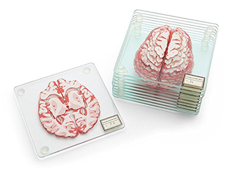 Each set of Brain Specimen Coasters comes with ten glass coasters celebrating the cerebral cortex. Each coaster has four rubber feet and a slice of brain printed on it. If you stack your Brain Specime