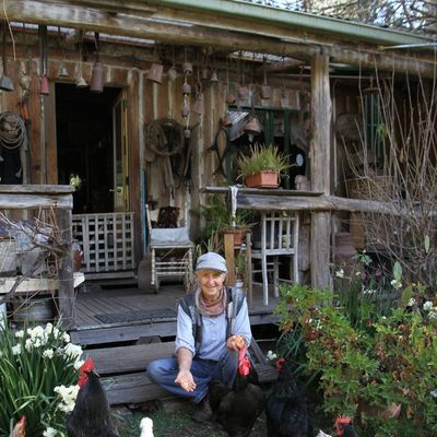 Ever dreamed about getting totally self sufficient? East Gippsland environmental activist Jill Redwood shares some of her techniques.