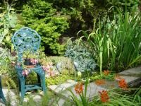 Garden (A Youngman)