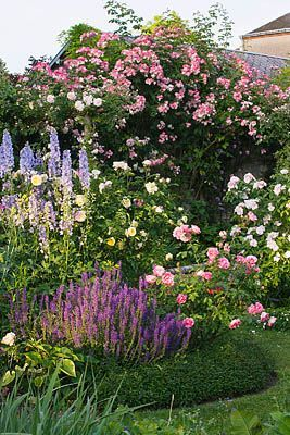 Our jumbled cottage garden......