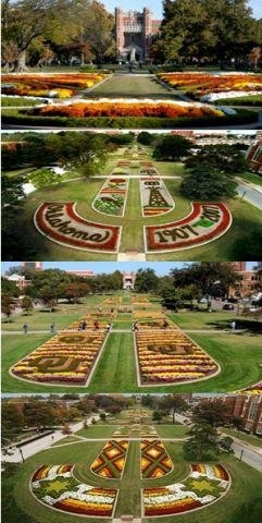 Loving University of Oklahoma in the fall. The Centennial was my freshman year. :)