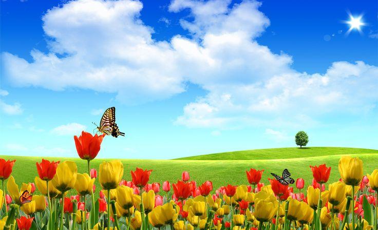 spring wallpaper hd for desktop download
