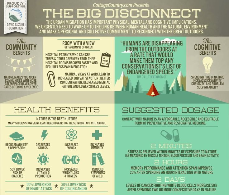 46 best Infographics images on Pinterest Activities, Aurora - housing benefit form
