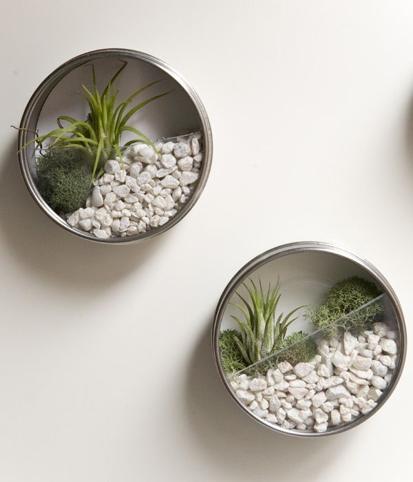 diy-vertical-terrarium-wedding-favors-03.jpg (600×700)