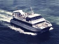 Las Golondrinas - Barcelona boat tours