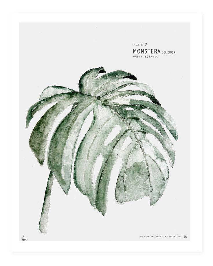 Botanic Urban // Plate 3