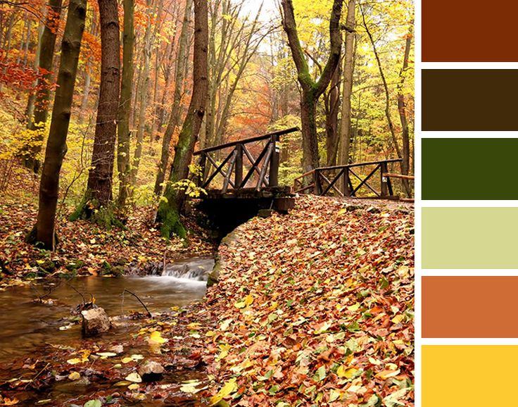 fall color palette - wedding color scheme