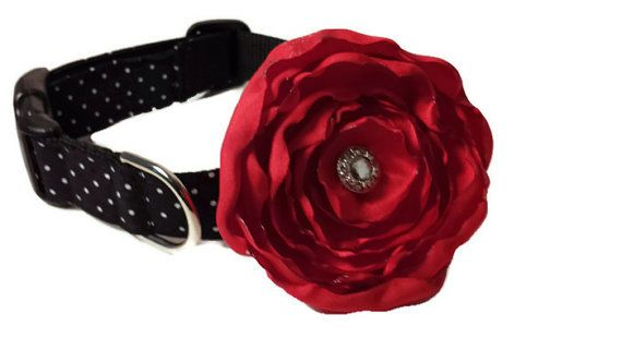 Dog Collar and Leash  Polka Dot Dog Collar and Flowe Set, Black and White by ColorMeHappyCollars  Matching Leash Available