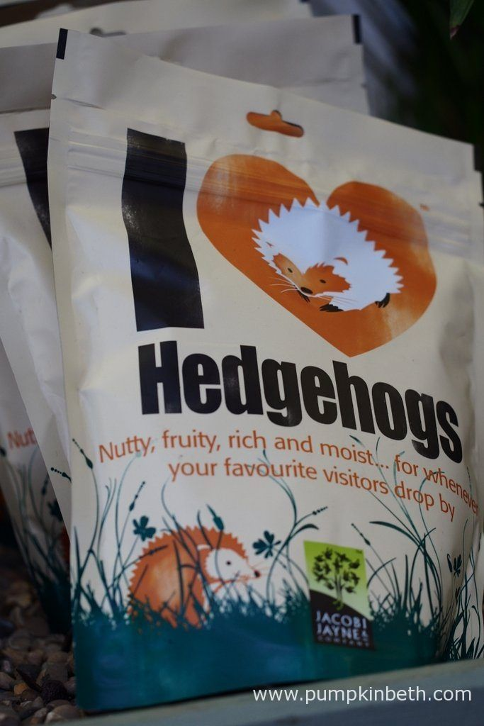 You can buy hedgehog food which is especially designed for hedgehogs.