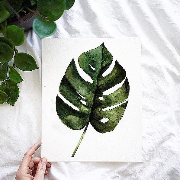 Monstera Leaf Watercolor Kit Watercolor Kit Let S Make Art