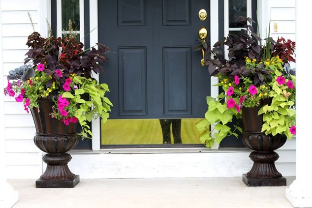 Love the colors in this.  Light grn sweet pot vine and purple impatients #readyforspring
