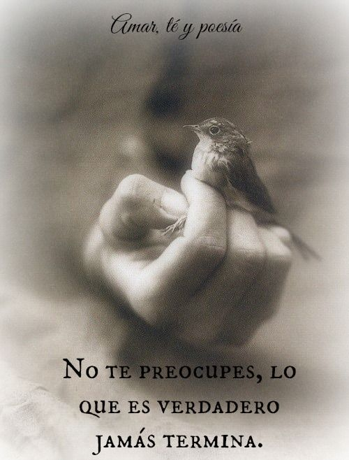Frases Frases De Amor Frases Positivas Amar Te Y Poesia Amar Te
