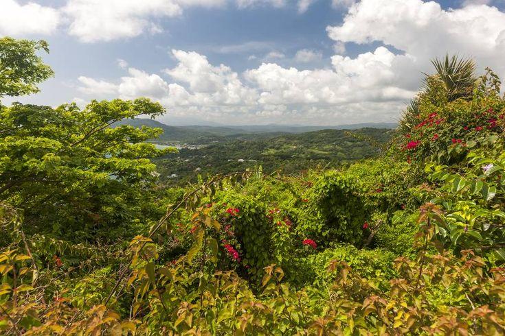 7. Okolice Ocho Rios - Jamajka to nie tylko plaża i palmy. Oto 7 miejsc, które…