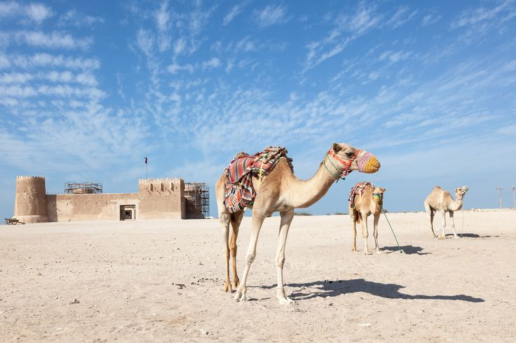 What to Do During a Doha Airport Layover - Condé Nast Traveler