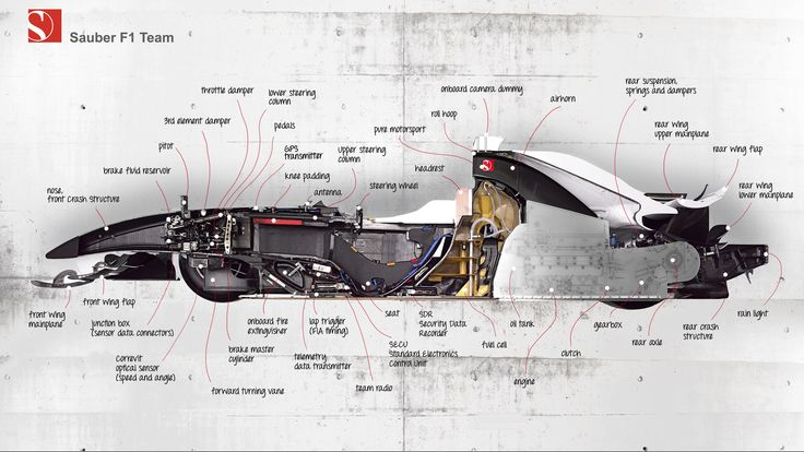 This Is What The Inside Of A Formula One Car Looks Like: Cars Crosssect, F1 Cars, Formula 1, F1Car, Sauber F1, Racing Cars, Cars Cutaway, F1 Team, Photo