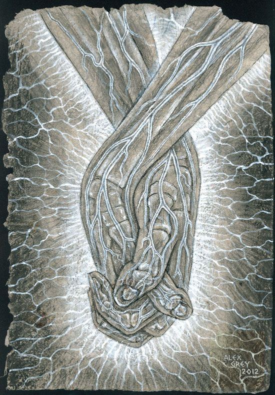 """alexgreyvisionary: """"Holding Hands by Alex Grey """""""