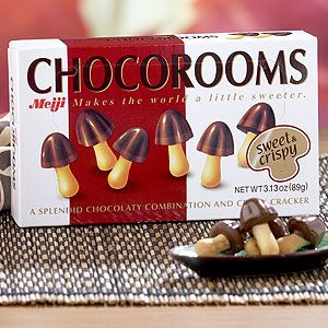 Chocorooms! i ate all of mine last night.  I need to find someplace that sells them to replenish my stash!