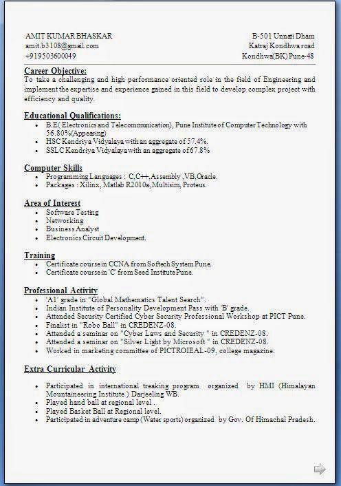 Cv Biodata Sample Template Example Ofexcellent Curriculum