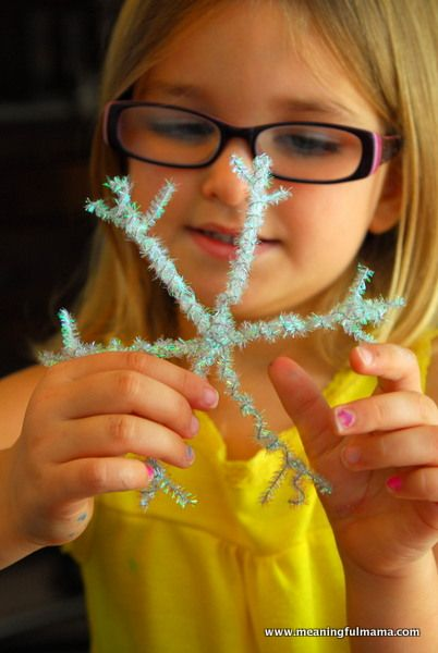 Snowflake Pipe Cleaner Craft_for december or january