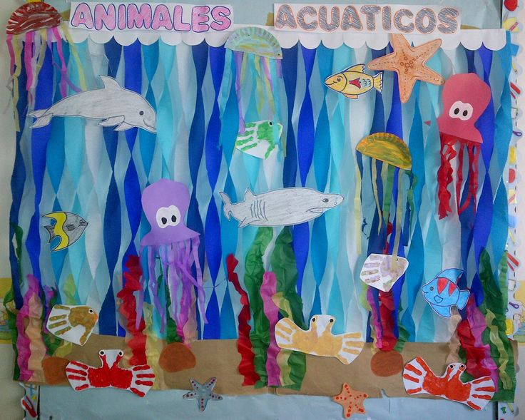 Cartelera animales acuáticos.