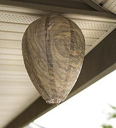 All-natural faux nest deters territorial wasps within a 200' radius - no sprays, poisons or chemicals.