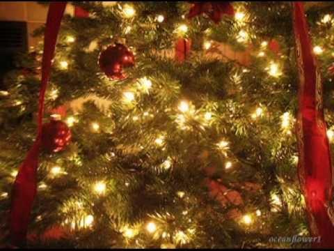 Amy Grant - Rockin' Around The Christmas Tree Lyrics ...