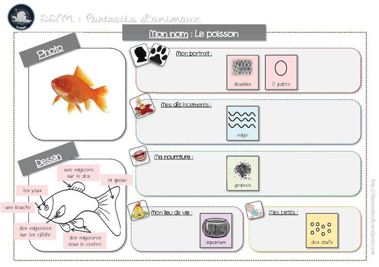 DDM -portraits animaux -affiche remplie le poisson