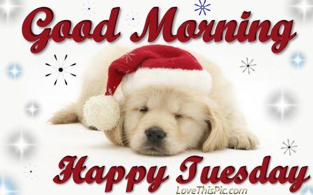 GOOD MORNING. HAPPY TUESDAY !!!!