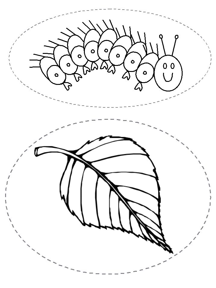 56 best Very Hungry Caterpillar images on Pinterest