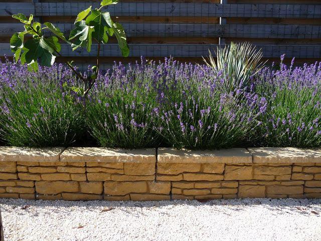 #Mediterrane tuin met lavendel en muurtje van stapelstenen #mediterraans