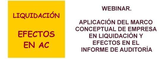 Aplicación del Marco Conceptual de Empresa en Liquidación y Efectos en el Informe de Auditoría de Cuentas