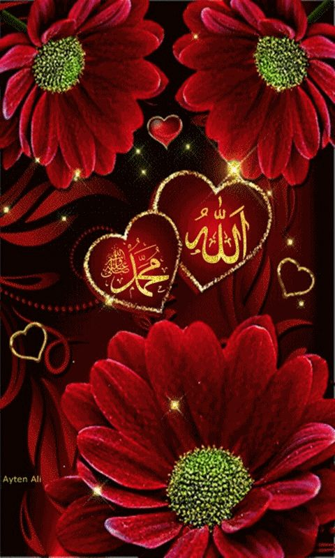 ALLAH C.C. MUHAMMED S.A.W. Mobile Screensavers available for free download.