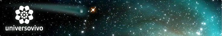 Universo Vivo: Bajo las estrellas